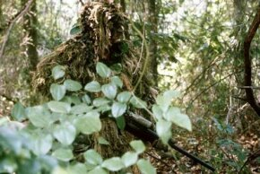 Snipers modify a type of camouflage clothing called a ghillie suit to match their surroundings.