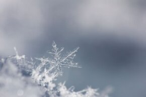 One snowflake can contain a quintillion molecules.