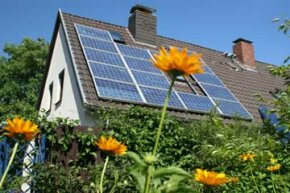 Just as flowers are best aimed toward the beaming sun, so too are solar panels.