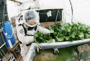 Veronica Ann Zabala-Aliberto works on an earth-bound, closed-system farming experiment that could be useful for extraterrestrial travel and settlement. The experiment is located at the Mars Desert Research Station in Utah. See more astronaut pictures.