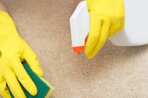 Most messes on stain-resistant carpet can be cleaned up easily with soap and water.