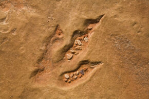 A fossilized track of a lower Jurassic theropod dinosaur found on a Navajo reservation in Arizona.
