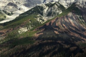 You can see an unusual pattern left by a forest fire on the side of a mountain in Yoho National Park in British Columbia. The fire was a controlled burn of forest areas infested with the mountain pine beetle.