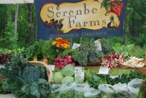 Serenbe has a 25-acre organic farm to minimize the need to ship groceries from far away.