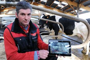 French breeder Jean-Pierre Dufeu shows on his tablet device, the live feed from the video surveillance cameras set up in his stable, as well as data from his milking and feeding robots.