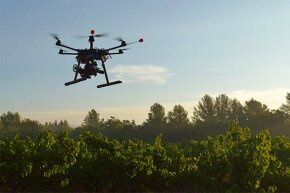 Drones, like this one filming a vineyard, alert growers to problems not visible from ground level, like fungal infestations.