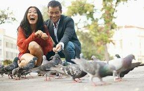 Fair-feathered friends.