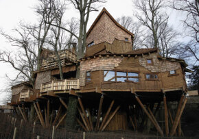 One of the world's largest tree houses is built between 16 lime trees in Northumberland, England.