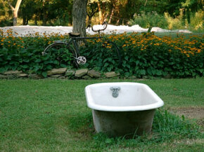 This garden is adorned with a bicycle and a bathtub -- not something you see every day.