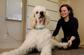 Dr. Finella Ely works as a chiropractor to dogs as well as humans. What other unique careers are on our list?