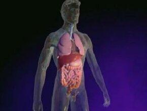 Human Atlas: Cystic Fibrosis