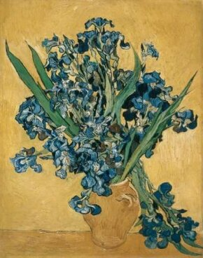 Vincent van Gogh's Irises (oil on canvas, 36-1/4x29 inches) is part of the collection at Amsterdam's Van Gogh Museum.