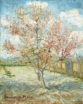 Vincent van Gogh's Peach Trees in Blossom (Souvenir de Mauve) is an oil on canvas (28-3/4x23-1/2 inches) that is housed in the Kröller-Müller Museum in Otterlo, Netherlands.