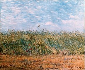 Vincent van Gogh's Wheatfield with a Lark is an oil on canvas (21-1/4 x 25-3/4 inches) that is housed in the Van Gogh Museum in Amsterdam.