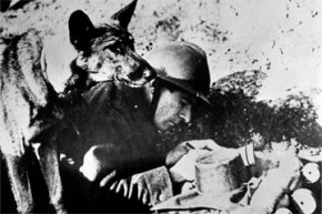 1939: A French officer scribbles a message while a dog stands by ready to deliver it. The dogs acted as couriers to scattered posts in the French zone.