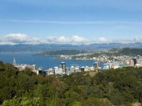 Panoramic view of Wellington, New Zealand, seen from Northland. See more wine pictures.