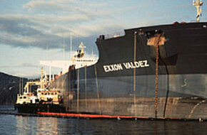 Someone on ExxonMobil's network altered sections of the article about the Exxon Valdez disaster, minimizing the effects of the oil spill.