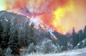 More often than not, fires travel faster up slopes. Once at the top of a hill, fires tend to burn out.