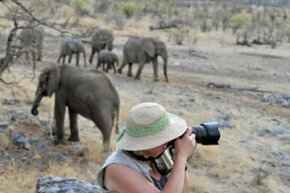 Safari Image Gallery Artistically capturing wildlife on film requires proper equipment and a special set of skills. See more safari pictures.