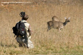 Many find items like tripods and camera bags helpful when accessorizing for wildlife photography.