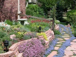 A Xeriscaped area. Can Xeriscaping help us save water during the current drought in the United States?