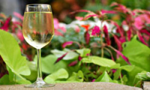 Top 10 Wine Country Gardens Howstuffworks
