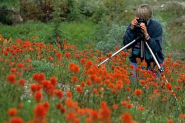 Accessories such as a tripod can help you keep the camera still and reduce blurriness in your images.