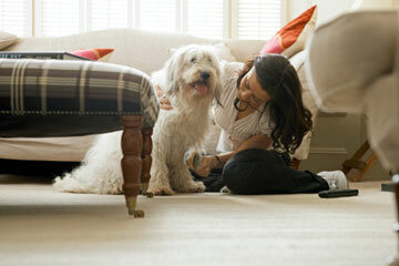 Grooming is a perfect time to examine your dog for potential problems.