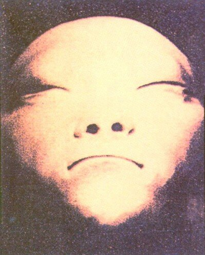 This dubious photograph of unknown origin purports to show the face of a dead alien. Similar pictures have proliferated in the wake of revived interest in stones of crashed UFOs and cover-ups.