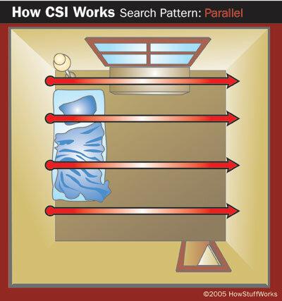 Parallel search pattern in crime scene investigation