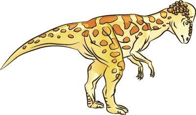 Learn how to draw this Pachycephalosaurus dinosaur.