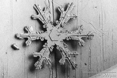 A six-pointed snow crystal, viewed through a scanning electron microscope.