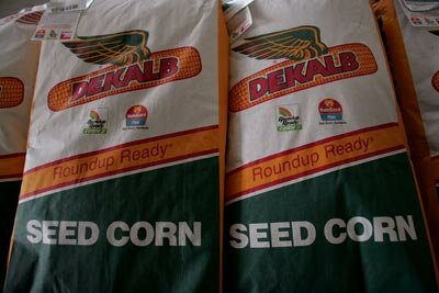 Packaged seed corn sits in the barn of a seed dealer and farmer. This year in the United States, more acres of corn are expected to be planted than any year since World War II to help meet increased demand, driven in part by increased ethanol production.