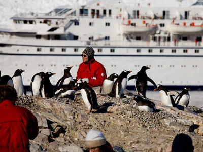 A tourist gets a closer look at Antarctica's penguins.