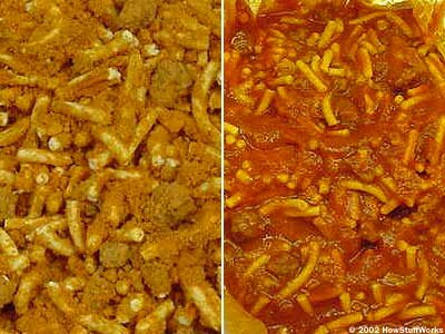 A freeze-dried meal of spaghetti and meatballs, designed for campers: On the left is the dried version; on the right is the rehydrated version.