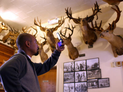 A customer at Foster's Bighorn Bar in Rio Vista, Calif., takes a cell phone picture of some of the 300 taxidermy animal heads on display.