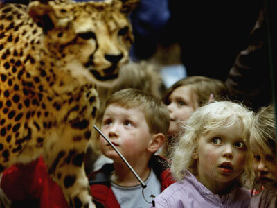 Young children look at exhibits at the Kelvingrove Art Gallery and Museum in Glasgow, Scotland.