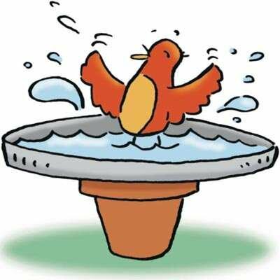 Splish-splash, this birdie is enjoying his bath.