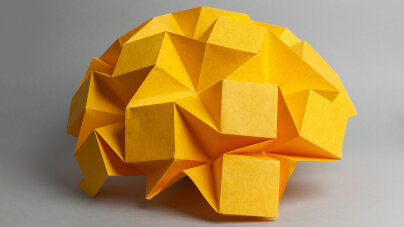 The Big, Bad Brain Quiz | HowStuffWorks