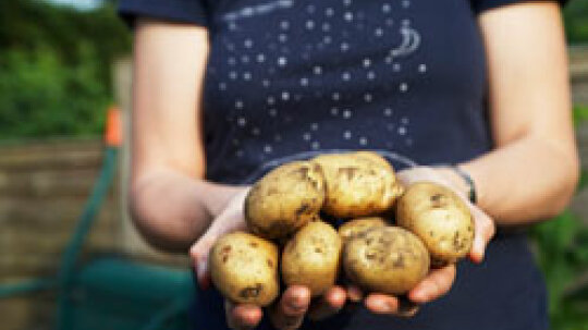 10 Ways to Use a Potato