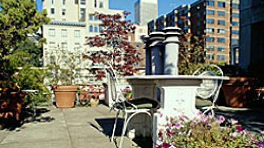5 Ways to Create a Cool Rooftop Garden
