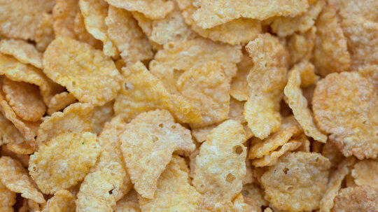 How Salmonella Can Wind Up in Your Breakfast Cereal