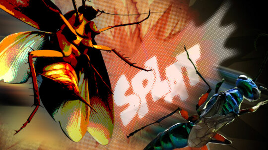 Cockroaches Karate-Kick Wasps to Avoid Becoming Zombies