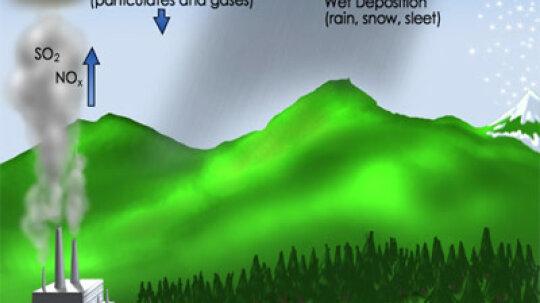 How Acid Rain Works
