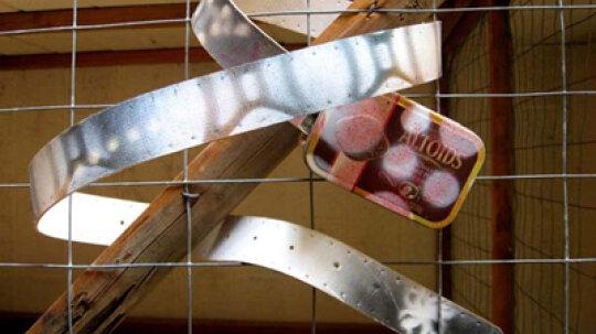How to Make a Belt from an Altoids Tin