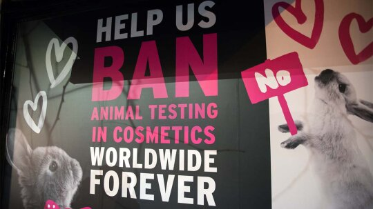 Will Alternative Technologies Make Animal Testing Obsolete?