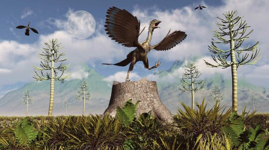 Meet Archaeopteryx, a Feathered Dino With Wings and Teeth
