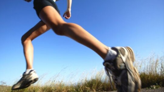 How many calories does running burn?