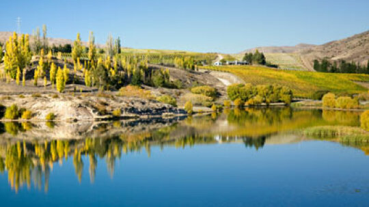 Ultimate Guide to the Central Otago Wine Region