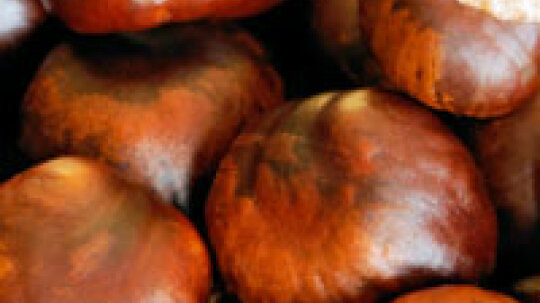 Chestnuts: Natural Food